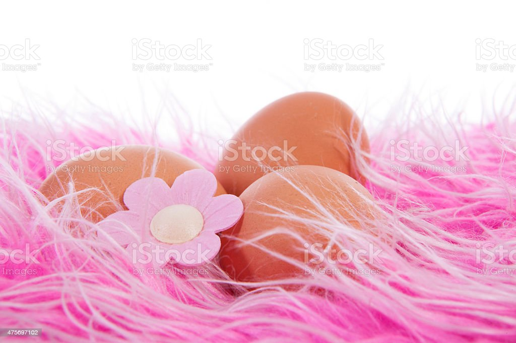 Chicken eggs decorated for easter stock photo