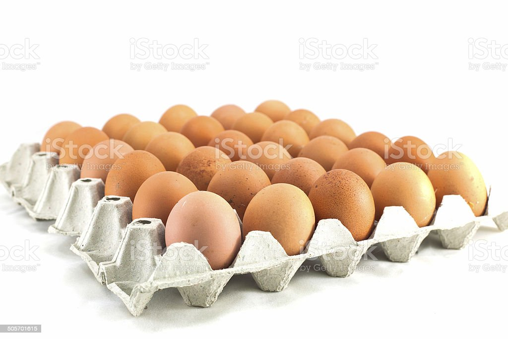 Chicken eggs in a cardboard on white stock photo