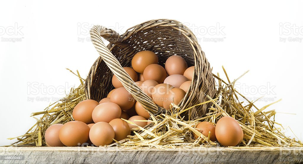 Chicken eggs in basket isolated. Organic food stock photo