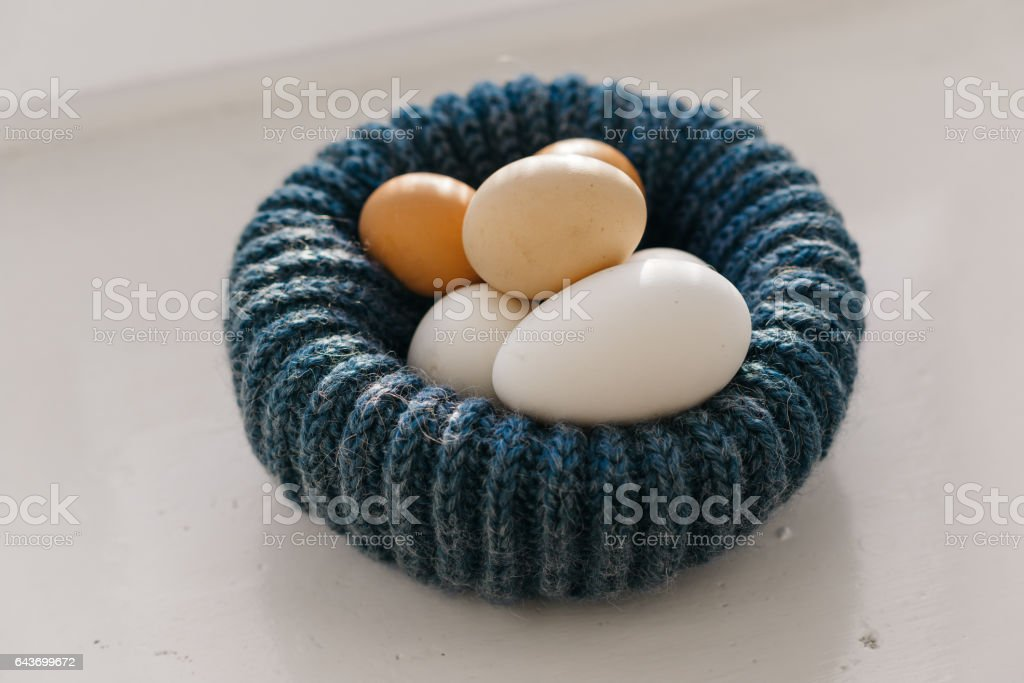 chicken eggs in blue nest stock photo