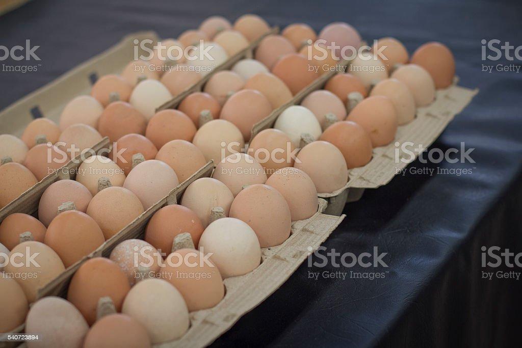 Chicken eggs in cartons stock photo
