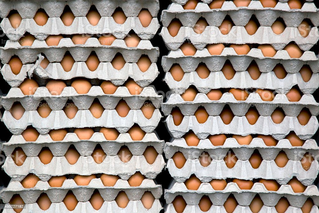 Chicken eggs in egg tray stock photo