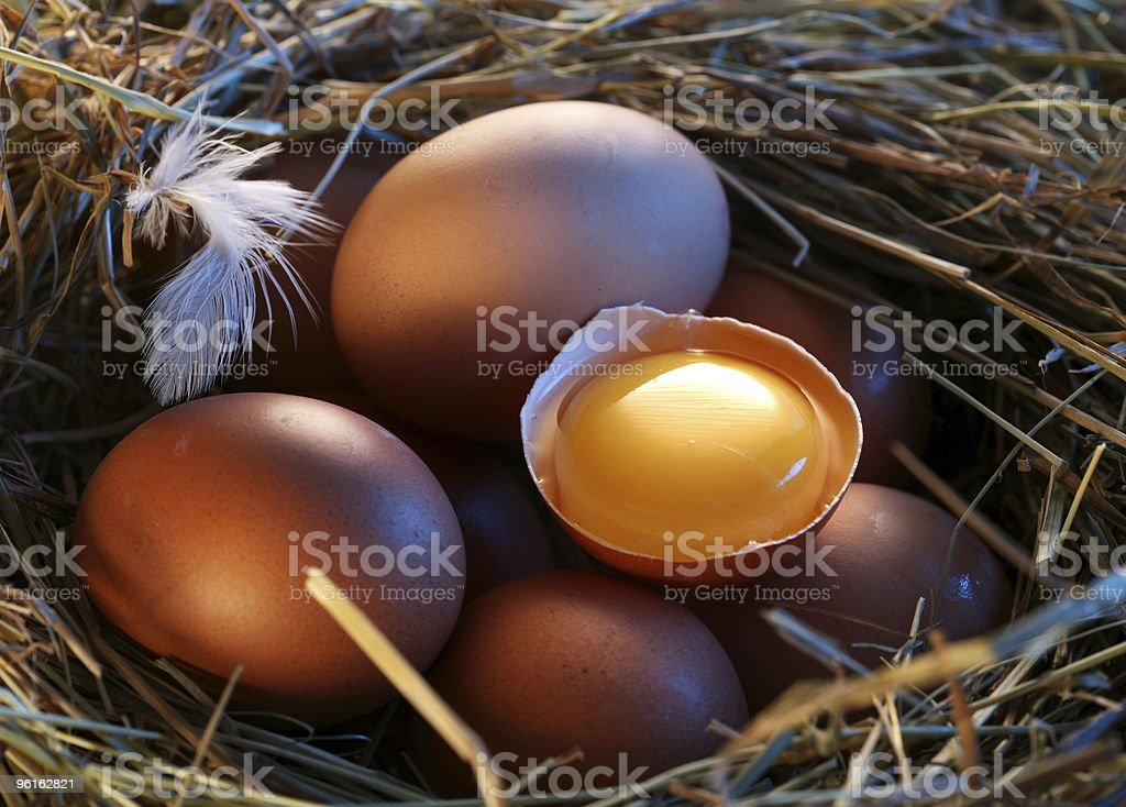 Chicken eggs in the straw with half a broken egg royalty-free stock photo
