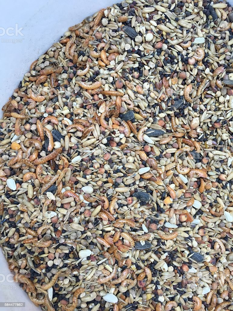 Chicken feed with crabs and sunflower seeds stock photo