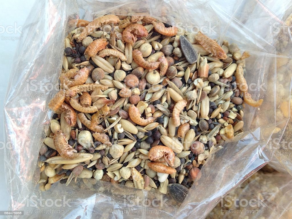 Chicken feed with crabs stock photo