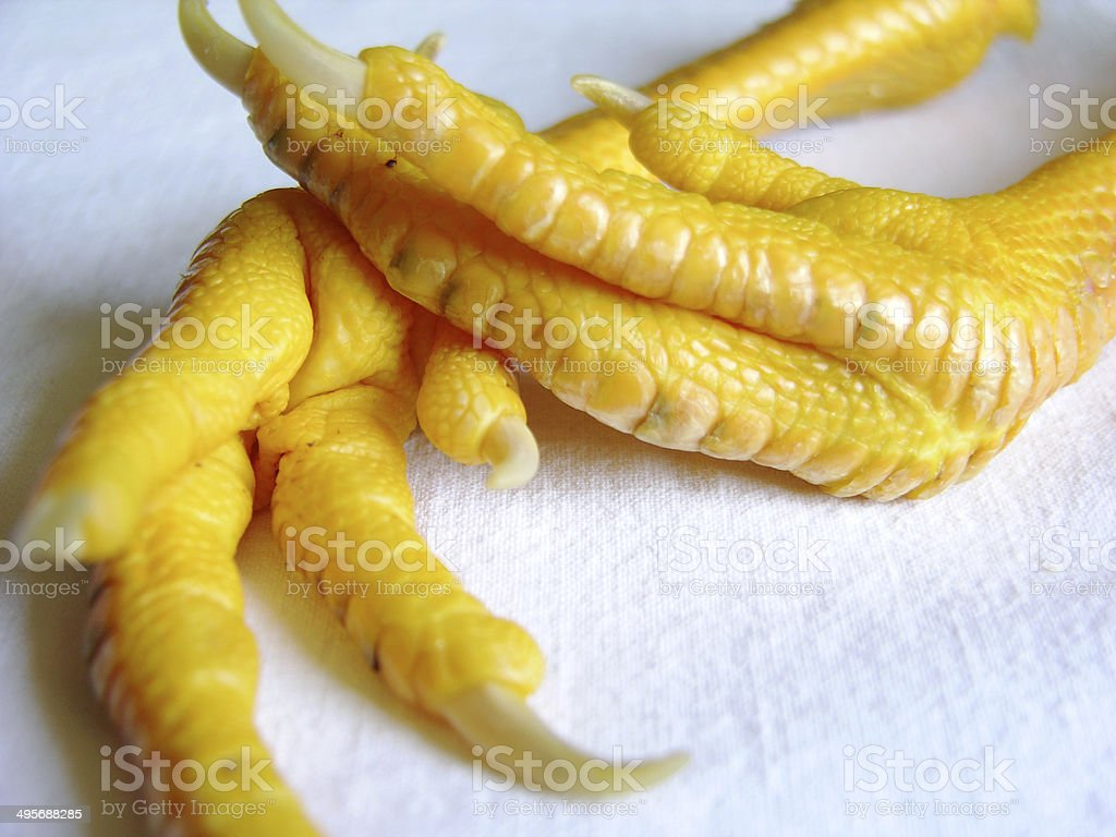 Chicken Feet with Claws royalty-free stock photo