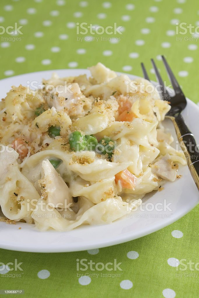 Chicken & Noodle Casserole royalty-free stock photo