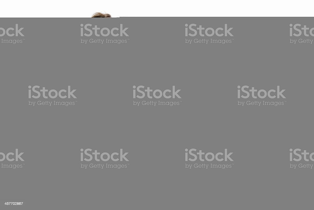 Chicken on plate royalty-free stock photo