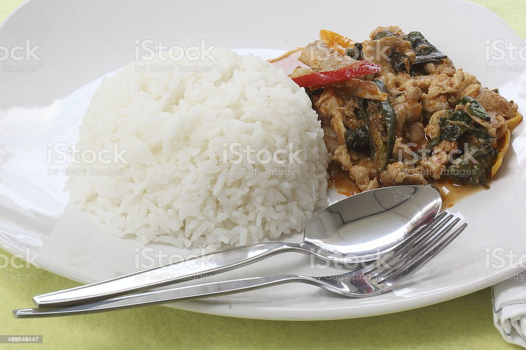 Chicken panang curry with rice royalty-free stock photo