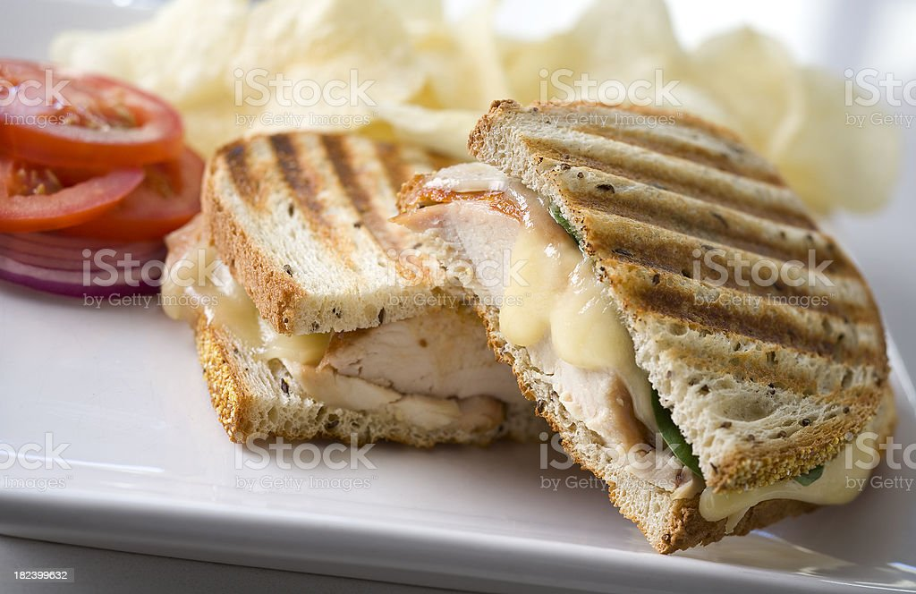 chicken panini stock photo