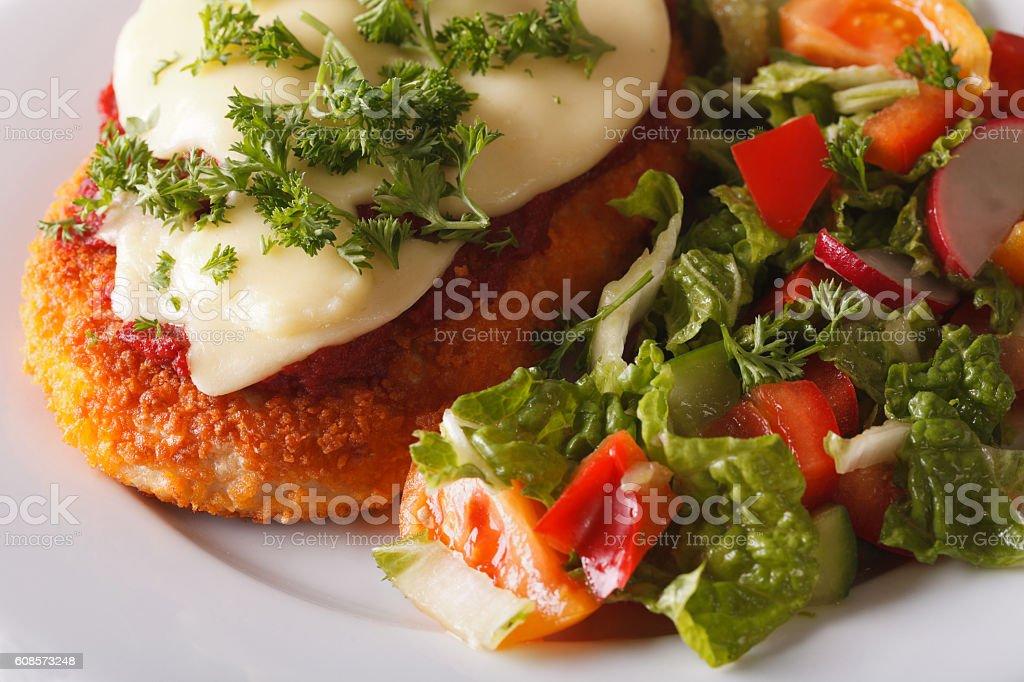Chicken Parmigiana and fresh salad macro. Horizontal stock photo
