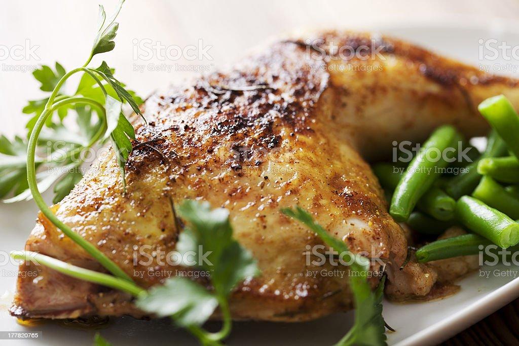 chicken stock photo