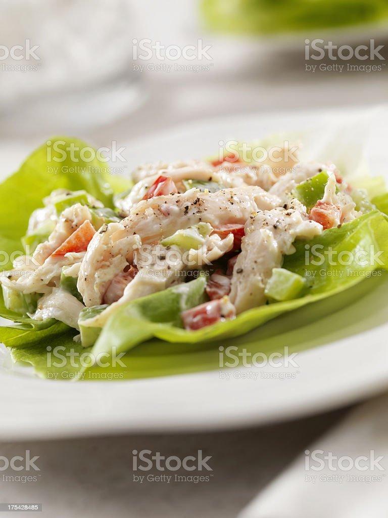 Chicken Salad Lettuce Wrap royalty-free stock photo