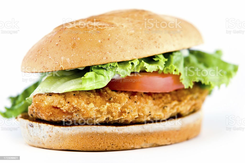 Chicken Sandwich (shallow depth of field) royalty-free stock photo