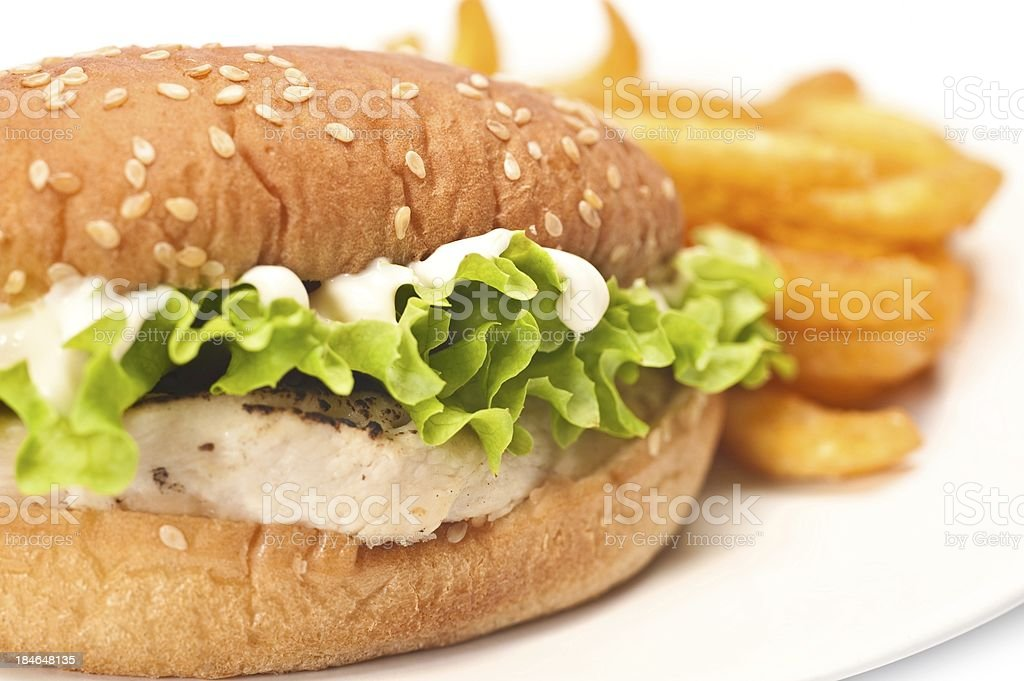 Chicken Sandwich stock photo