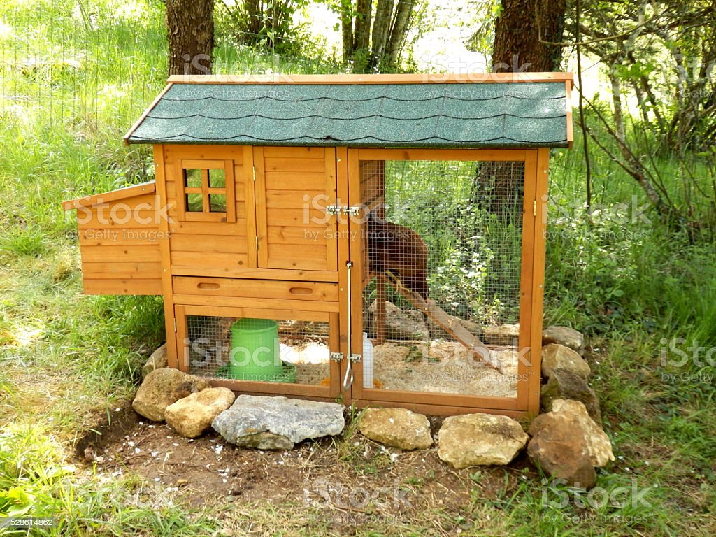 Chicken Shed stock photo