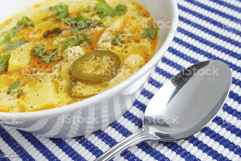 Chicken soup royalty-free stock photo