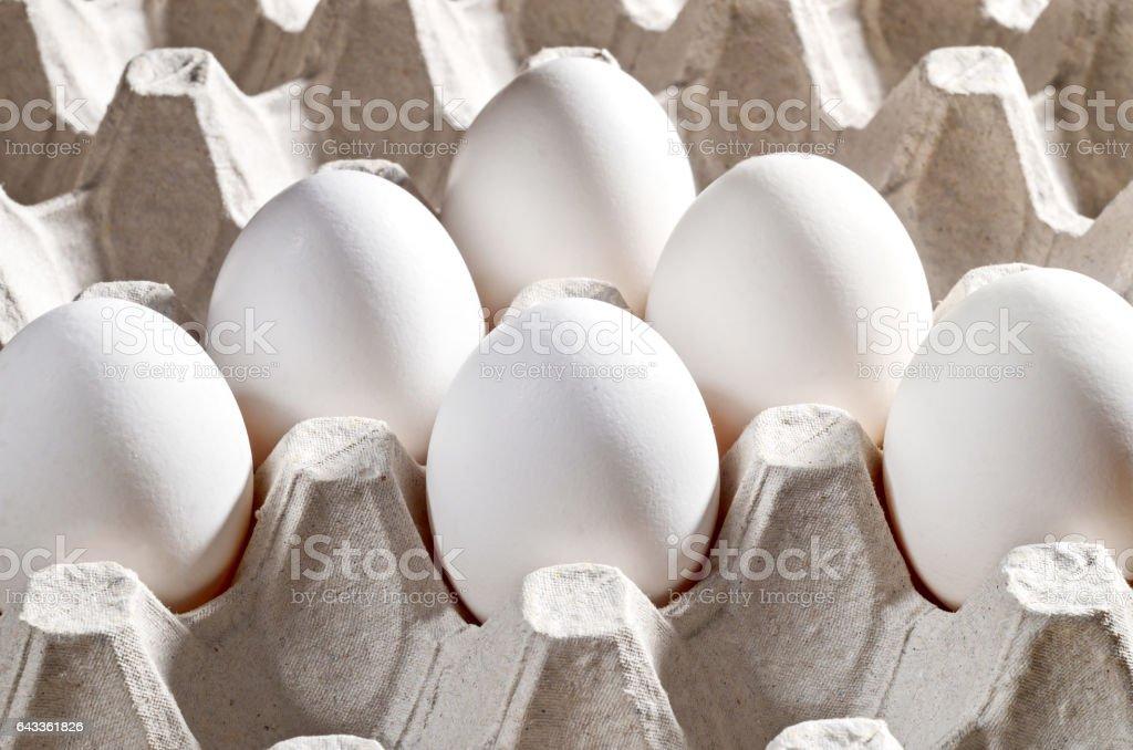Chicken white eggs in a cassette stock photo