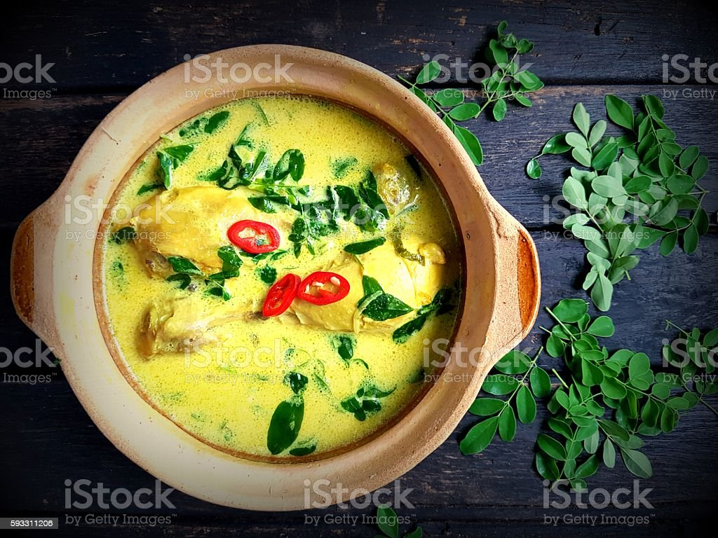 Chicken with turmeric and coconut milk stock photo
