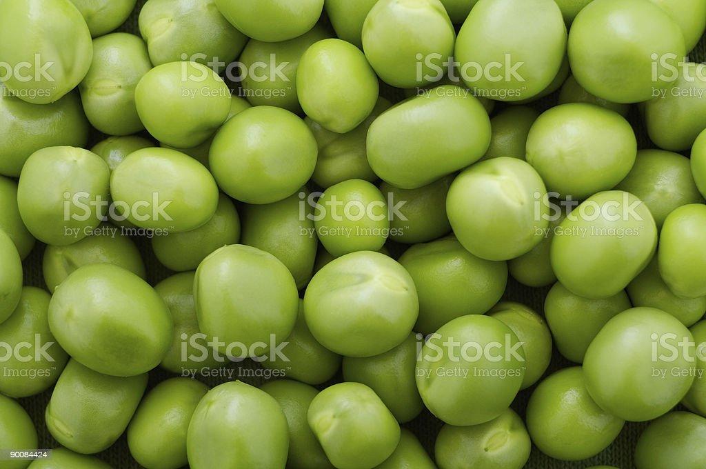 Chick-peas stock photo