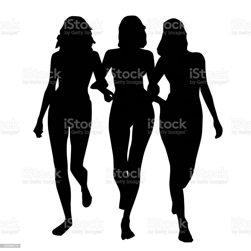 3 chicks royalty-free stock photo