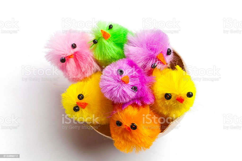 Chicks with Golden Eggs stock photo
