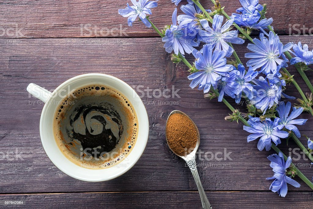 Chicory drink with blue flowers stock photo