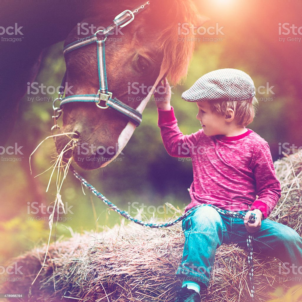 Child and a horse stock photo