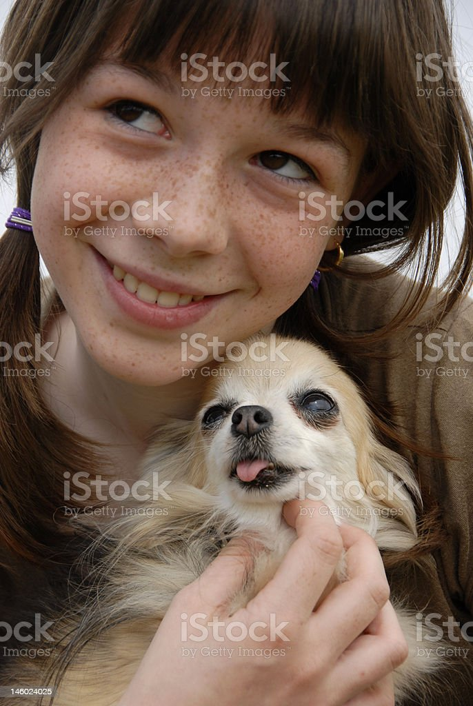 child and chihuahua royalty-free stock photo