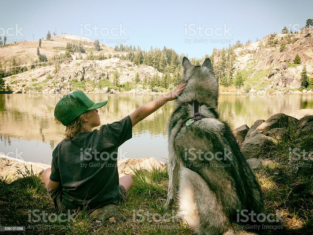 Child and dog sit at a mountain lake in summer stock photo