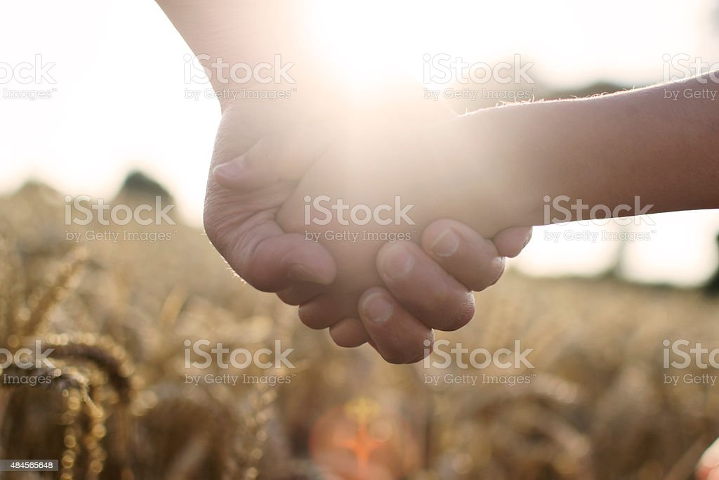 Child and parent holding hands stock photo