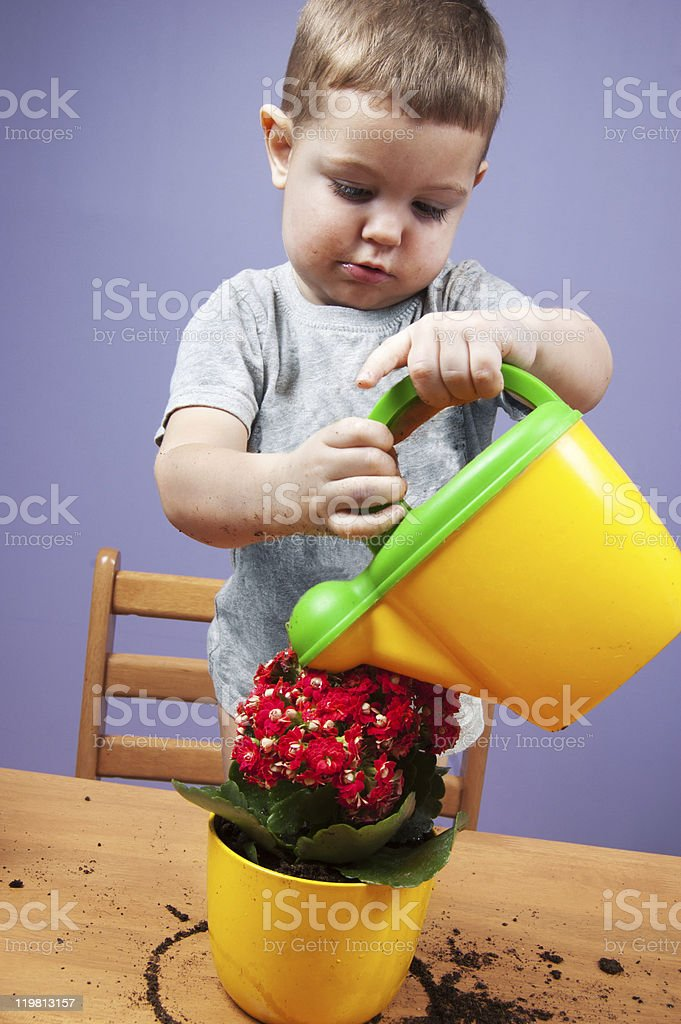 Child and plants royalty-free stock photo