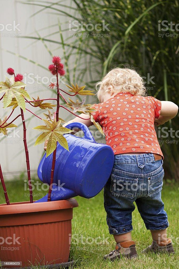 child at garden work stock photo