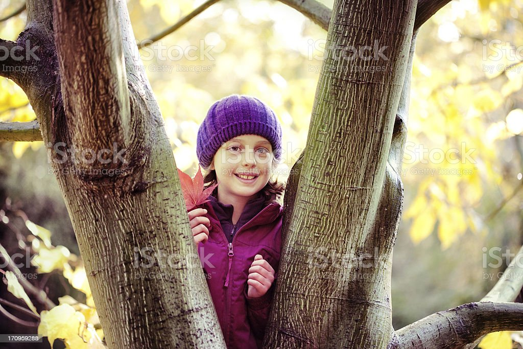 Child by a Maple tree royalty-free stock photo