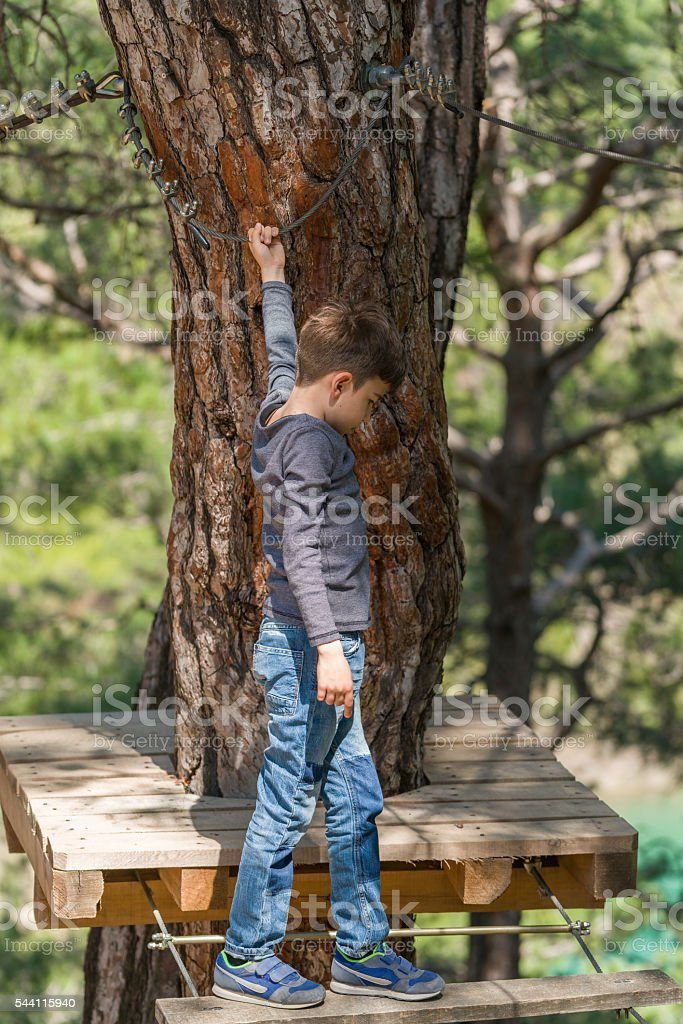child climbing in Adventure park in woods stock photo