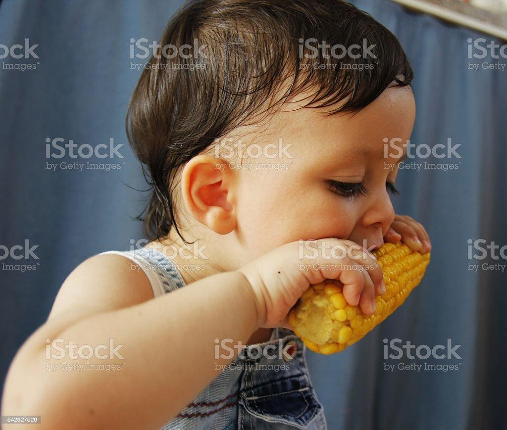 child eating fresh corn stock photo