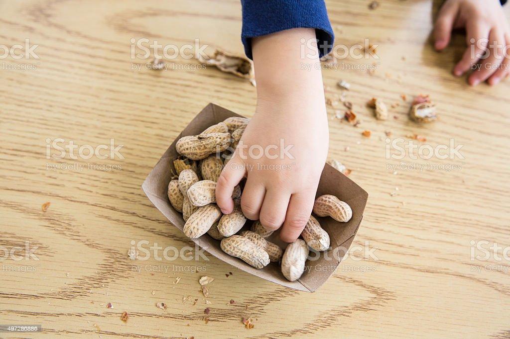 Child eating Peanuts stock photo