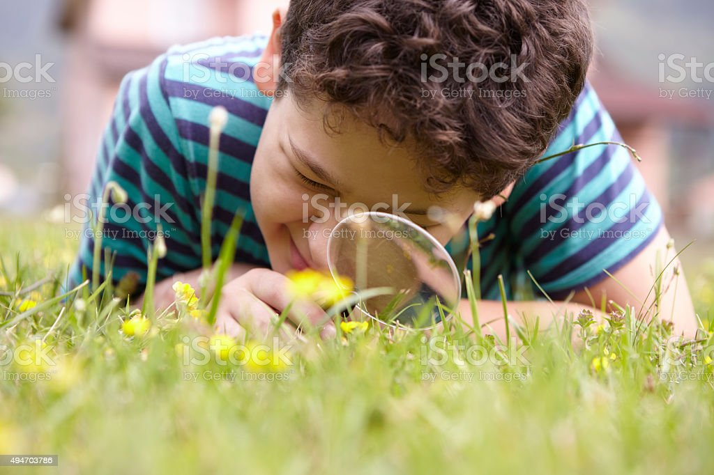 Child examining the nature with a magnifying glass stock photo
