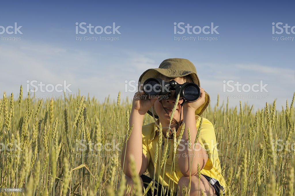 Child explorer in a field royalty-free stock photo