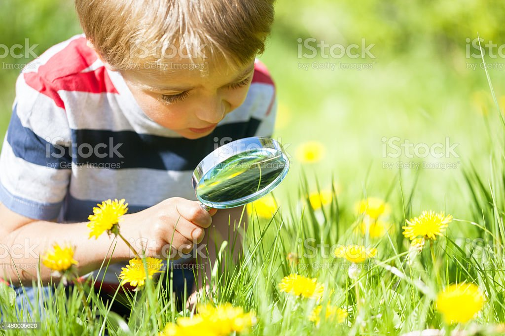 Child exploring nature stock photo