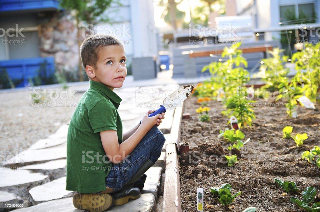 Child gardener royalty-free stock photo