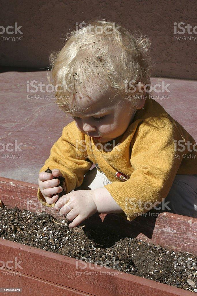 child gardening royalty-free stock photo