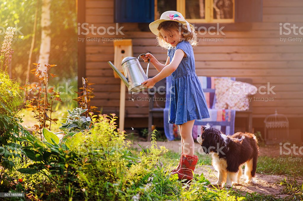 child girl watering flowers with her dog in summer garden stock photo