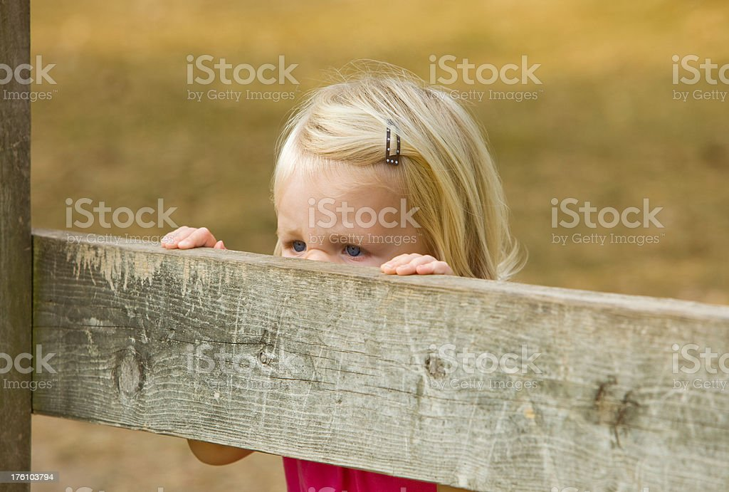 Child Girl with Scrunched Nose Looking Over Fence stock photo