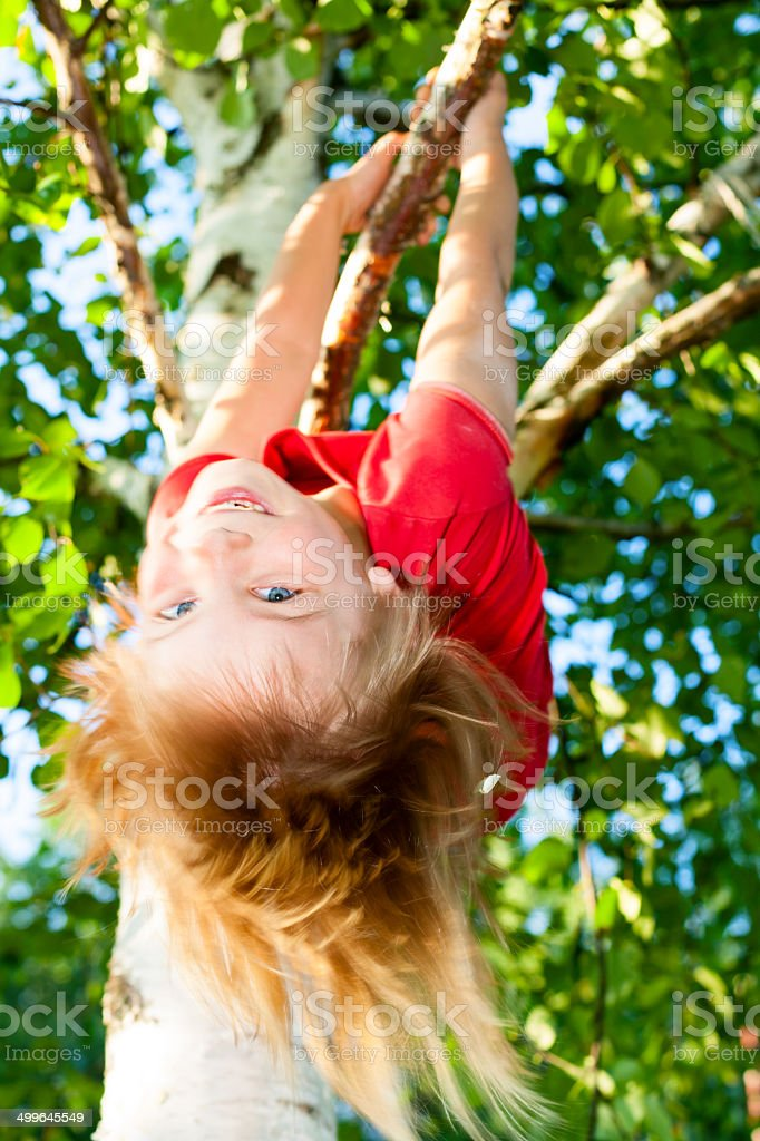 Child hanging from a tree branch stock photo