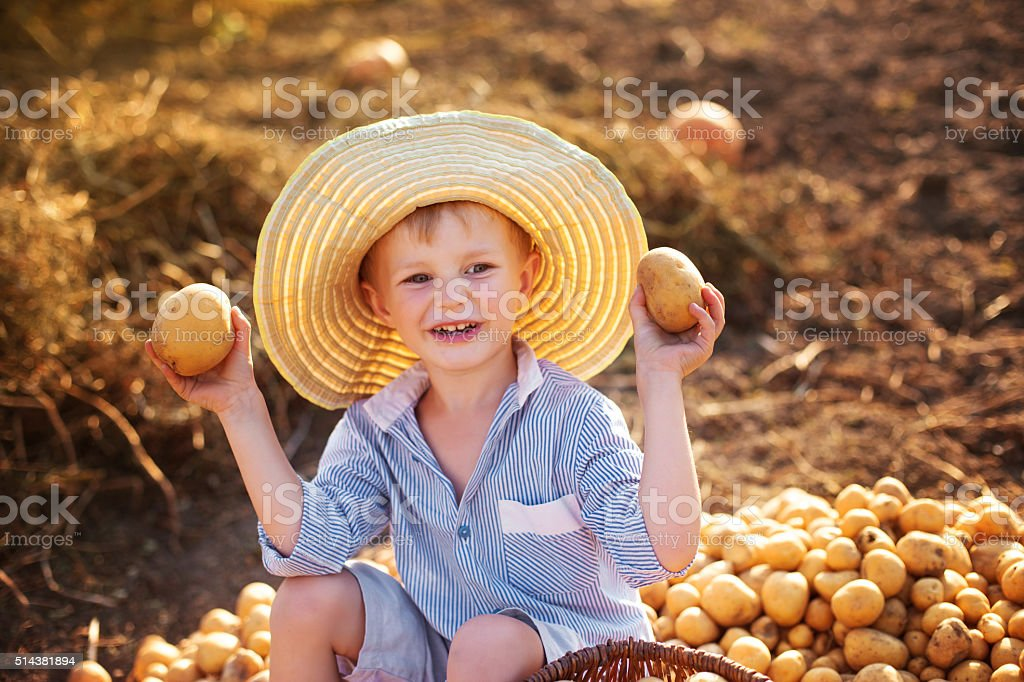 child helps to take the crop stock photo