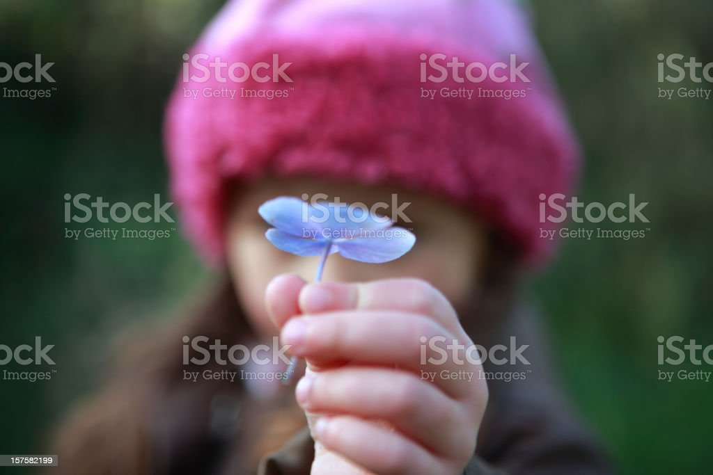 Child holding a flower stock photo