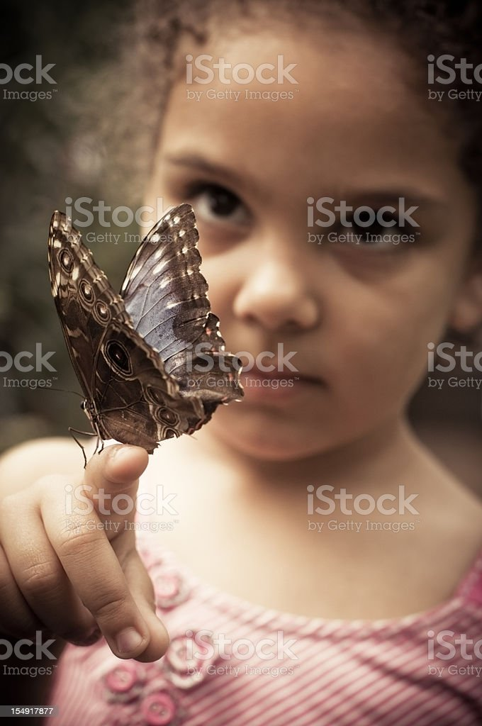 Child (3-4) Holding Butterfly Speckled Wood ( Pararge aegeria ) stock photo