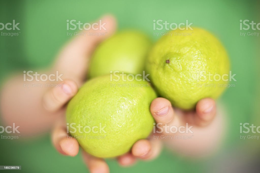 Child holding limes stock photo