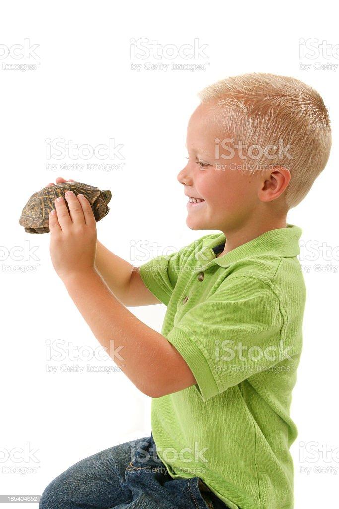 Child holding pet turtle royalty-free stock photo